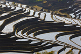 Reflections Off Water Filled Rice Terraces, Yuanyang, Honghe, China Photo by Peter Adams