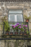 Portugal, Guimaraes, Flowers on Balcony Outside Window Photo by Jim Engelbrecht