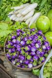 Myanmar. Bagan. Nyaung U. Market. Eggplant for Sale in the Market Photographie par Inger Hogstrom