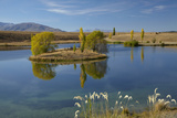 New Zealand, South Island, Mackenzie Country, Loch Cameron in Autumn Photo by David Wall