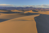 The Mesquite Sand Dunes in Death Valley National Park, California, USA Photographic Print by Chuck Haney