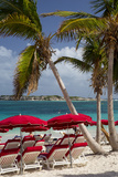 Umbrellas Along Orient Beach, Saint Martin, West Indies Photo by Brian Jannsen
