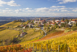 Vineyards, Treiso, Alba, Langhe, Piedmont, Italy Photo by Peter Adams