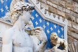 David by Michelangelo, Palazzo Vecchio'S, Firenze, Tuscany, Italy Photo by Nico Tondini