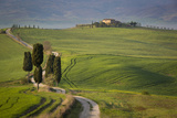 Cypress Trees and Winding Road to Villa Near Pienza, Tuscany, Italy Photo by Brian Jannsen