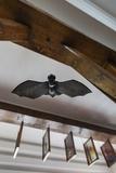 Romania, Transylvania, Tihuta Pass, Hotel Castel Dracula, Bat Art Photo by Walter Bibikow