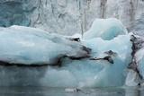 Norway. Svalbard. Spitsbergen. Hornsund. Brepollen Photo by Inger Hogstrom