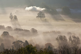 Misty Autumn Morning, Uley, Gloucestershire, England, UK Photo by Peter Adams