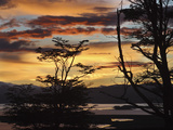 Argentina, Ushuaia, Sunrise Photo by John Ford