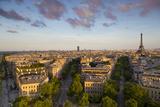 Evening Sunlight over the Eiffel Tower and Buildings of Paris, France Fotografía por Brian Jannsen