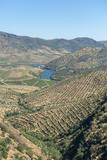 Portugal, Figueira de Castelo Rodrigo, View of Douro River Valley Photo by Jim Engelbrecht