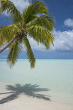 Cook Islands, Aitutaki. One Foot Island. White Sand Beach with Trees Photo by Cindy Miller Hopkins