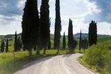Winding Road, Near Pienza, Tuscany, Italy Photo by Peter Adams