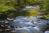 Tennessee, Spring Reflections on Little River at Smoky Mountains NP Photo by Joanne Wells