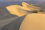 Mesquite Flat Sand Dunes at Dawn, Death Valley, California Photo by Rob Sheppard