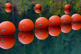 USA, Oregon. Orange Buoys Form Dam on Rogue River Foto av Jean Carter
