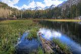 USA, California, Sierra Nevada Range. Landscape with Weir Pond Photo by Dennis Flaherty