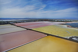 California, San Francisco, Colorful Algae in Salt Evaporation Ponds Photo by David Wall