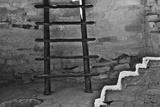 USA, Colorado, Mesa Verde, Long Ladder Photo by John Ford