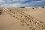 Galapagos Green Sea Turtle Tracks. las Bachas, Galapagos, Ecuador Foto van Pete Oxford