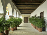 Arched Colonnade in the Plaza de La Aduana, Cartagena, Colombia Photo by Jerry Ginsberg
