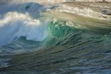 Carmel Beach, California, Bird Flying in Breaking Wave Photographie par Sheila Haddad