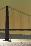 California, San Francisco, Golden Gate Bridge and San Francisco Bay Photo by David Wall
