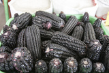 Black Corn Grown High in the Peruvian Andes, Used to Make Chica, Peru Photo by Mallorie Ostrowitz
