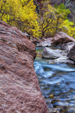 USA, Utah, Zion National Park. Stream in Autumn Landscape Photo by Jay O'brien