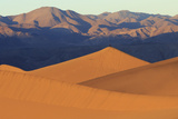 A Photographer on a Sand Dune at Sunrise, Mesquite Dunes, Death Valley Photo by James White