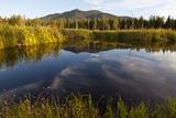Cherry Mountain, Pondicherry NWR, White Mountains, New Hampshire Photo by Jerry & Marcy Monkman