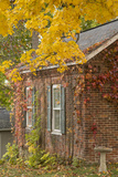 USA, Iowa, Mt Vernon. Brick House in Autumn Photo by Don Grall