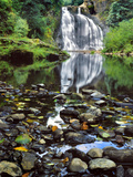 USA, Oregon, Young's River Falls. Waterfall Landscape Photo by Steve Terrill