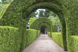 Europe, Portugal, Vila Real, Palace of Mateus, Formal Garden Photo by Lisa S. Engelbrecht