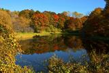 USA, Minnesota, Sunfish Lake, Fall Color Reflected in Pond Photo by Bernard Friel