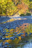 Fall Colors Reflect in the Saco River, New Hampshire. White Mountains Photo by Jerry & Marcy Monkman