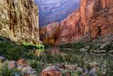 USA, Arizona, Grand Canyon, Colorado River Float Trip Whitmore Creek Photo by John Ford