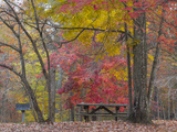 USA, Tennessee, Falls Creek Falls State Park. Picnic Table in Park Photo by Don Paulson