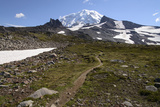 Mt. Rainier NP, Washington. View of Mt. Rainier on Spray Park Trail Photo by Matt Freedman