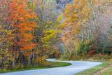 North Carolina, Blue Ridge Parkway, Boone Fork Area Photo by Jamie & Judy Wild