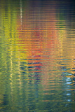Fall Color Trees Reflected in Rippled Water Photo by Trish Drury
