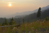 Washington, Wenatchee NF, Overlook with Smoky Sky from Wild Fires Photo by Savanah Stewart