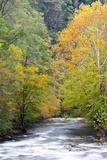 Tennessee, Great Smoky Mountains National Park, Little River Photo by Jamie & Judy Wild