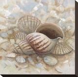 Beach Prize I Stretched Canvas Print by Arnie Fisk