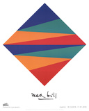 Unity of Colors with Equal Surface Areas Prints by Max Bill