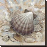 Beach Prize II Stretched Canvas Print by Arnie Fisk