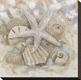 Beach Prize IV Stretched Canvas Print by Arnie Fisk