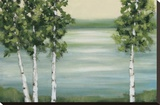 Quiet Lake Stretched Canvas Print by Rita Vindedzis