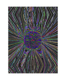 Sun Magnetics Visualized Photographic Print by Thinker Collection STEM Art by Lisa C Clark