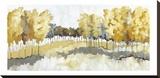 Grasslands Stretched Canvas Print by Jacqueline Ellens